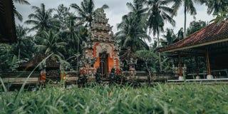 Balinesecarvings som, mycket är härliga, för att snida bakgrunden och, denna bild, har en bakgrund i templet, från Bali arkivfoto