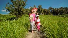 Balineseceremoniprocession med den caucasian kvinnan som går mellan risfält stock video