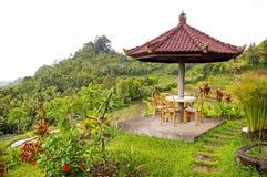 Balinesegarten Lizenzfreie Stockfotos