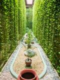 Balinesegarten mit Brunnen lizenzfreies stockfoto