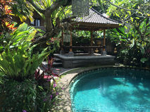Balinesegarten und -pool in Ubud, Bali, Indonesien Lizenzfreie Stockfotos