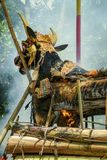 Balinesekremeringceremoni Fotografering för Bildbyråer