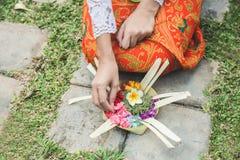 Balinesekvinna som gör den erbjudande canangsari för ritual och ber på arkivbild