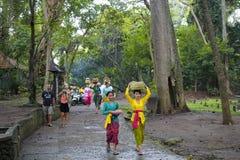 Balinesekvinnor laddar erbjuda av mat i träkrus på huvudet Arkivfoton
