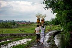 Balinesekvinnor som bär offerings på hennes huvud arkivbilder