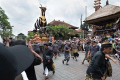 Balinesemän bär den svarta tjursarkofaget under en procession för `-Ngaben `, en kremeringceremoni på Ubud, Bali, 2nd mars 2018 royaltyfria foton