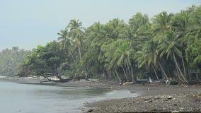 Balinesian people bathing in ocean under palms stock footage