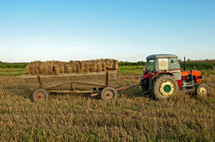 Baling hay in filed Stock Photo