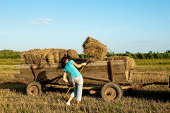 Baling hay in filed Stock Photos