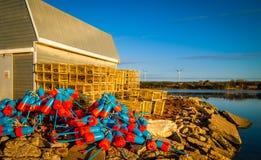 Balises colorées de pêche de homard photo stock