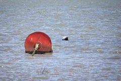 Balises rouges de bateau Photo libre de droits