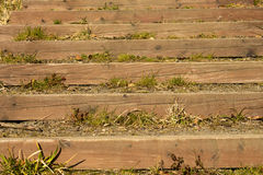 Balk like stairs. In mountains Royalty Free Stock Photos
