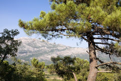 Balkan landschap Royalty-vrije Stock Foto