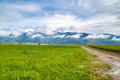 Balkan Mountain Range. Low cloudscape covering the mountain royalty free stock photo