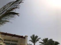 Balkon biały piękny nowożytny Islamski Arabski budynek przeciw tłu gałązki zieleni drzewka palmowe w tropikalnym seasid zdjęcia stock