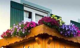 Balkon mit Blumen Stockbild