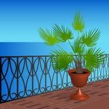 Balkon mit einer Palme in einem Topf Lizenzfreie Stockbilder