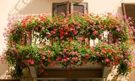 Balkon na wygłupy domu z kwiatami w okwitnięciu, Włochy zdjęcie royalty free