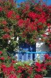 Balkon und Blumen Stockfoto