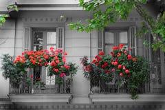 Balkon und Blumen Stockfotografie
