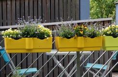 Balkon z kwiatami Obrazy Stock