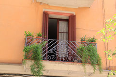 Balkon z louvre roślinami w Barcelona i drzwiami, Hiszpania Zdjęcie Royalty Free