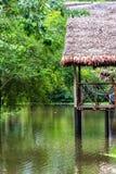 Balkong i djungeln Royaltyfri Bild