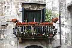 Balkong i Lucca, Tuscany, Italien Royaltyfria Bilder