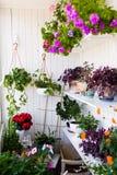 Balkong med blommor Arkivfoto