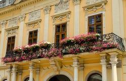 Balkong med blommor på en historisk byggnad i Kosice Royaltyfri Bild