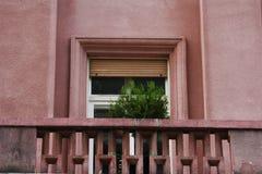 Balkong med ett träd och en i stadens centrum Zagreb för fönster byggnad, Kroatien, bakgrund för blå himmel Fotografering för Bildbyråer
