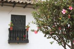 Balkong med pelargon och hibiskusträdet Royaltyfri Bild