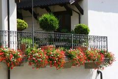 balkong som hugely blommas Arkivfoto