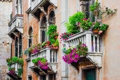 Balkonger av det bostads- huset i Venedig dekorerade med blommor Arkivfoton