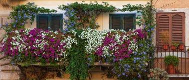Balkonger på piazza Navona arkivbild