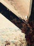 Balkongfäktning Royaltyfri Fotografi
