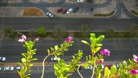 Balkonmening van mooie roze bloemen en de stadsstraten, auto's en parkeren, in de vroege ochtend stock footage