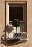 balkonowy podpalany drzewo Fotografia Royalty Free