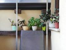 Balkony Hauptgarten stockfoto