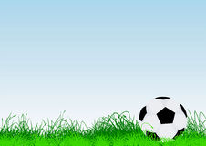 Ball. Vector illustration of a lonesome football on grass Stock Photography