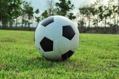 Ball auf Gras stockbilder