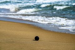 ball in the beach stock photo