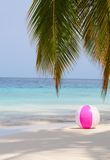 Ball on the beach under the palm Stock Image