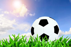Ball and blue sky with sun flare. Royalty Free Stock Photo