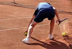 A ball boy in action Stock Photos