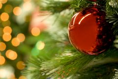 Ball on branch. Macro image of red toy ball hanging on Christmas tree branch Stock Photos