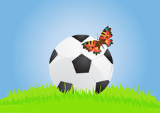 Ball with butterfly Stock Images