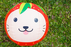 Ball cat face Royalty Free Stock Photo