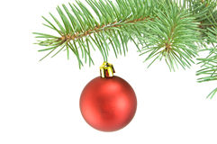 Ball christmas Royalty Free Stock Images