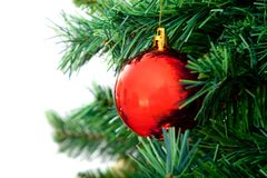 Ball in christmas tree Stock Photos